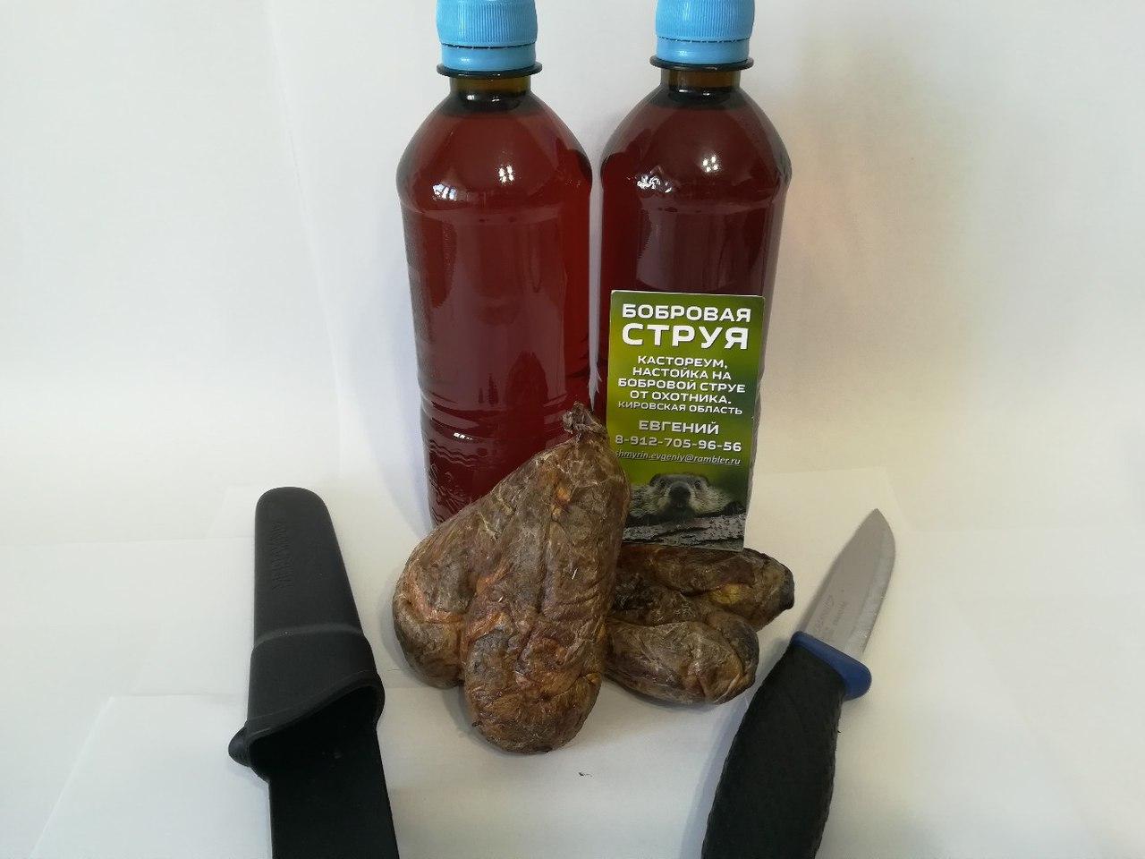 Лекарство бобровая струя: как правильно настоять и приготовить, чем 55